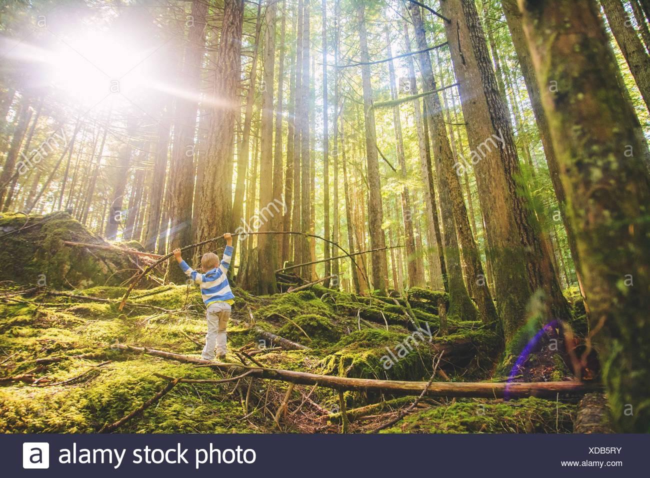 Kleiner Junge (4-5) balancieren auf Log in Wald Stockbild