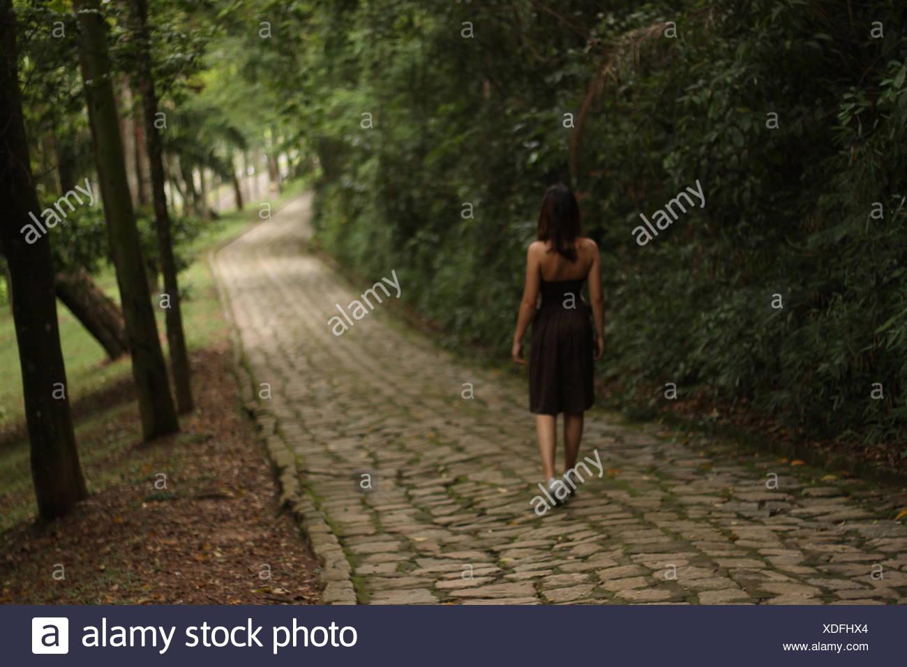 Rückansicht der Frau zu Fuß auf Weg entlang Bäume Stockbild