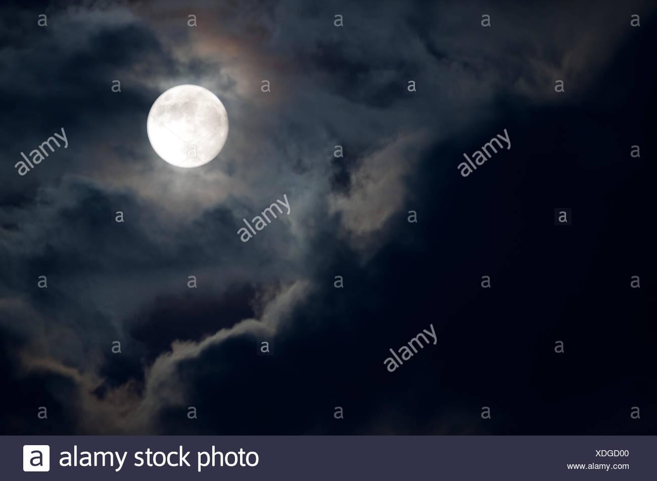 Schön Gute Nacht Mond Malvorlagen Bilder - Malvorlagen Von Tieren ...