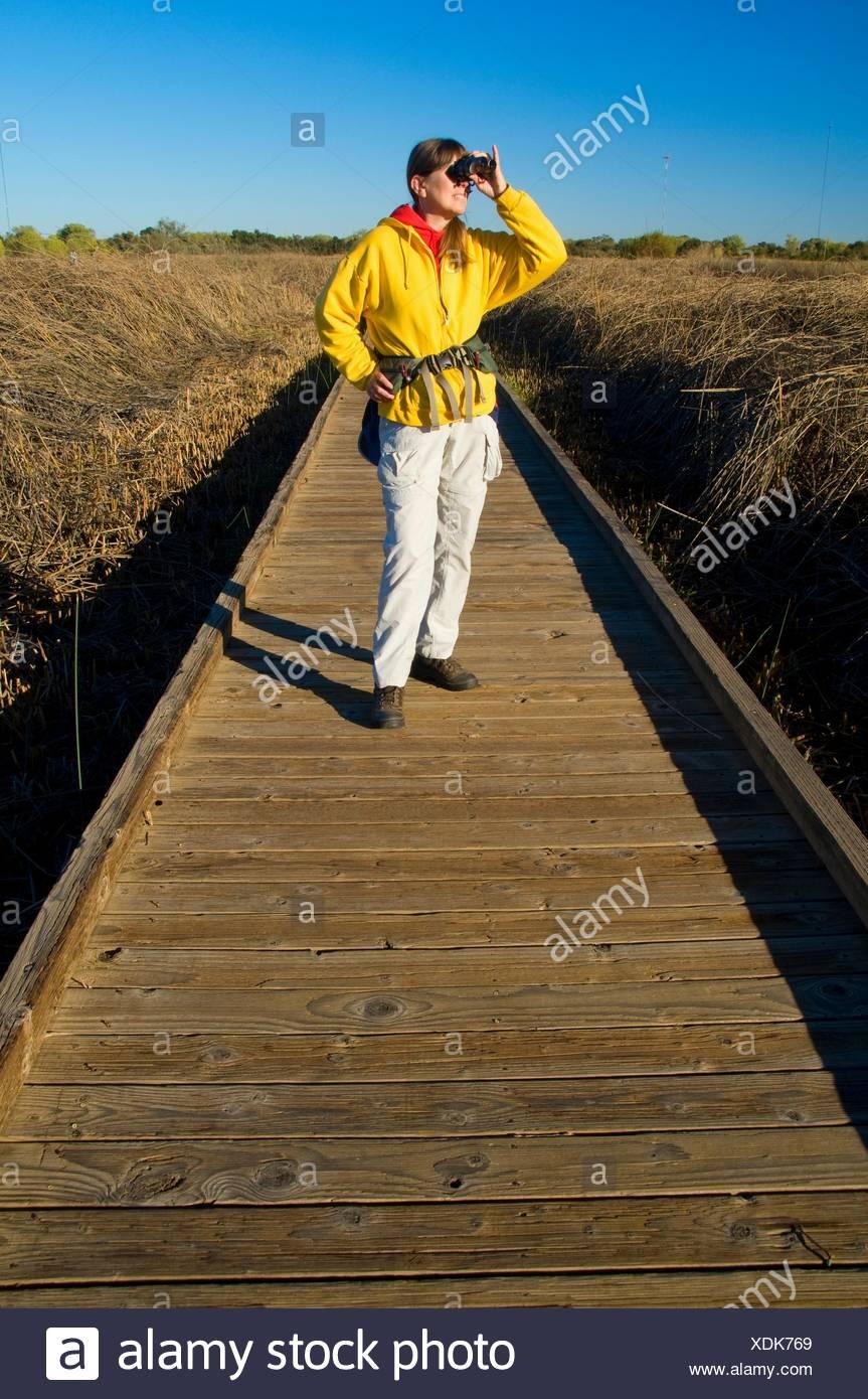Slough Feuchtgebiete zu Fuß Promenade, Cosumnes River Preserve, CA verloren Stockbild