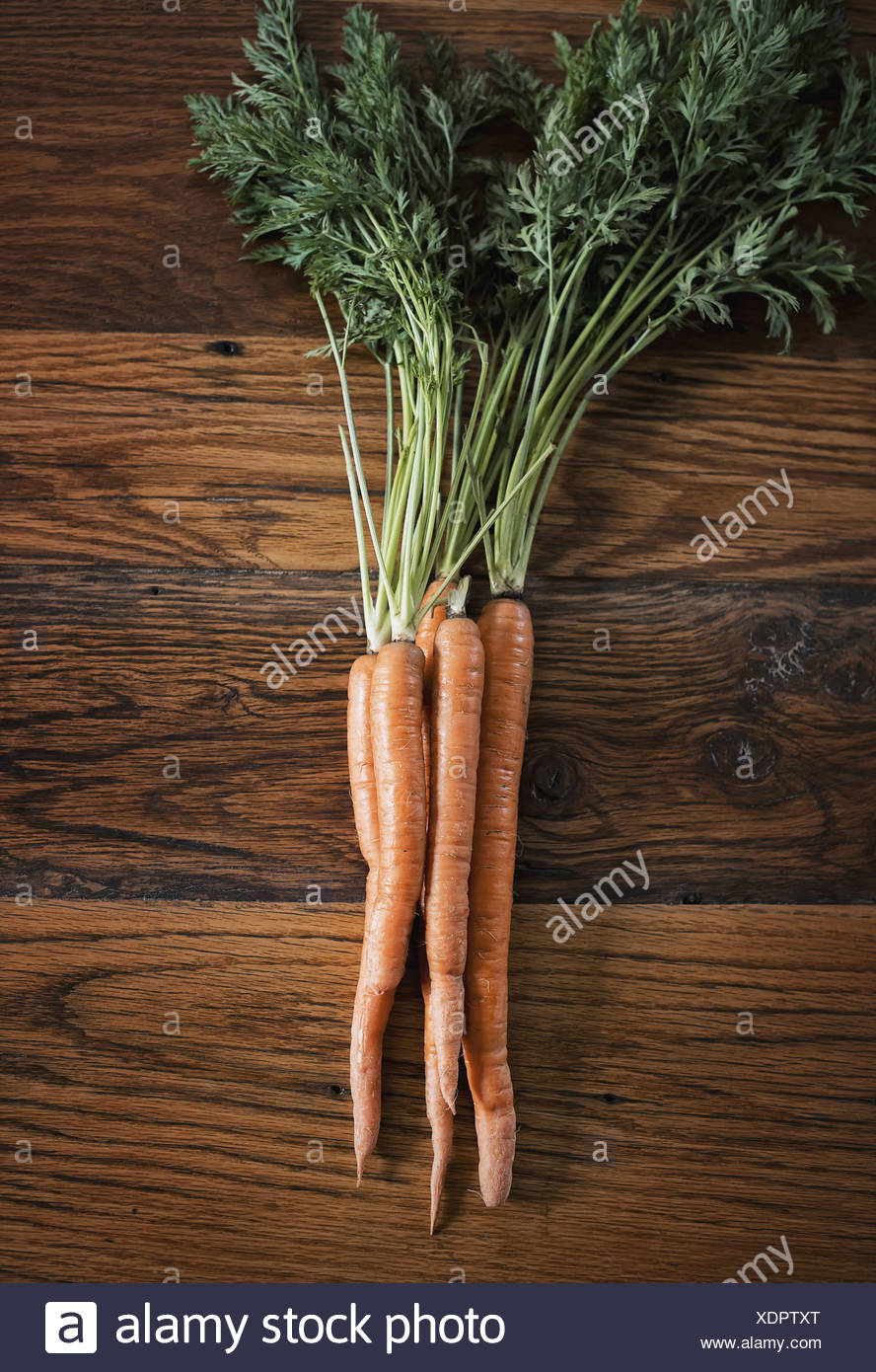 Eine kleine Gruppe von Karotten mit grünen grünen Spitzen frisch geernteten liegend auf einer Tischplatte Stockbild
