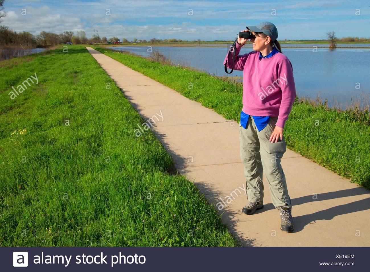 Birding in Slough Feuchtgebiete verloren gehen, Cosumnes Fluss erhalten, Kalifornien. Stockbild
