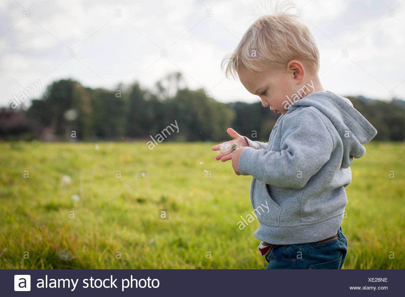 Junge in einem Feld stand Stockbild