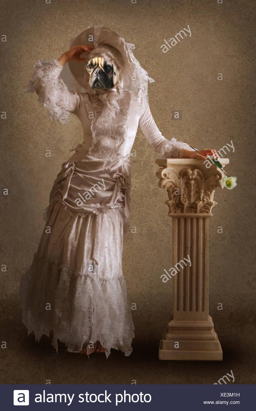 surreale Hund wie eine Dame gekleidet Stockbild