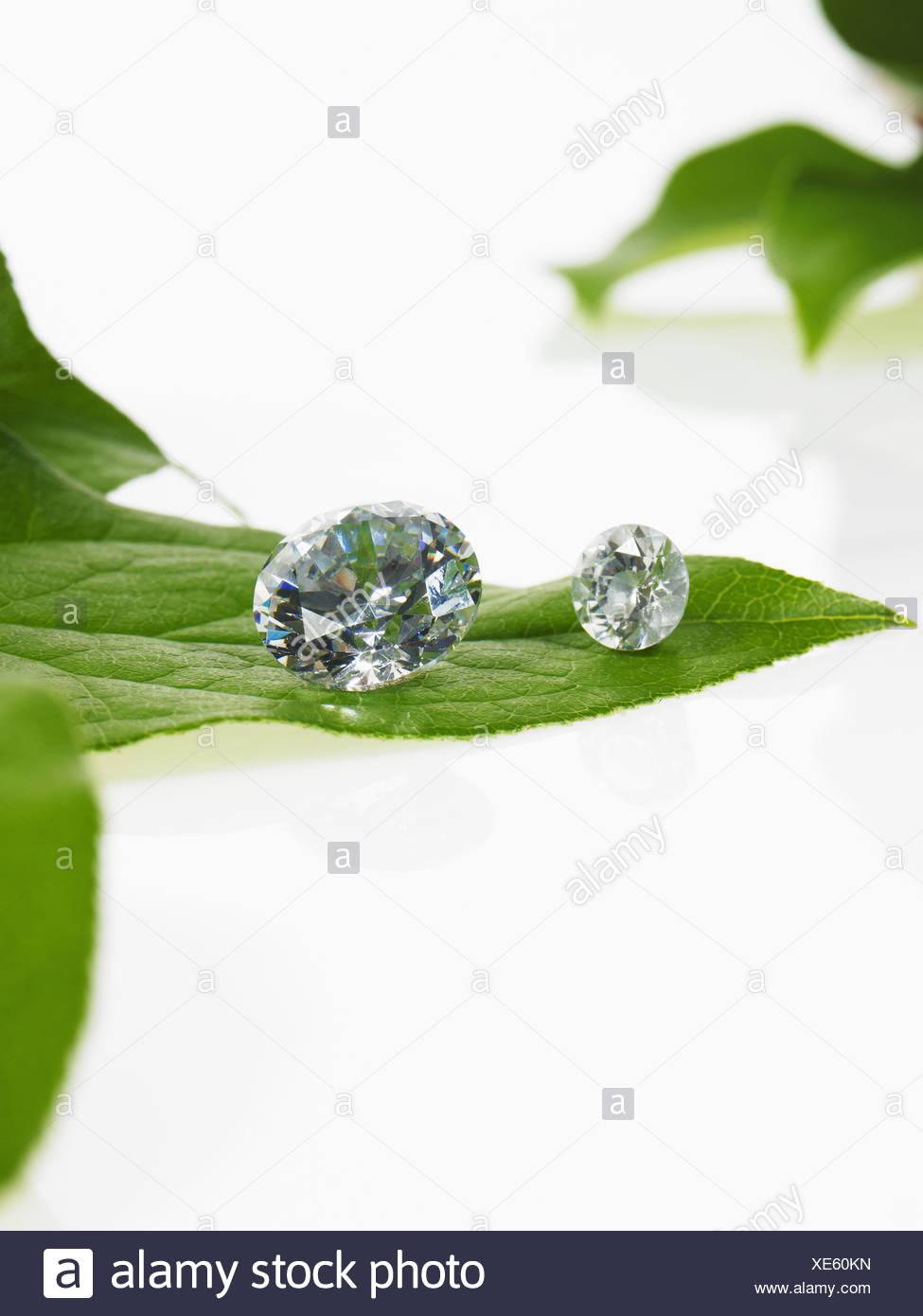 Ein einzelnes Blatt mit Adern, und eine kleine klare Glaskugel oder Objekte mit Facetten, die Licht reflektieren. Stockbild