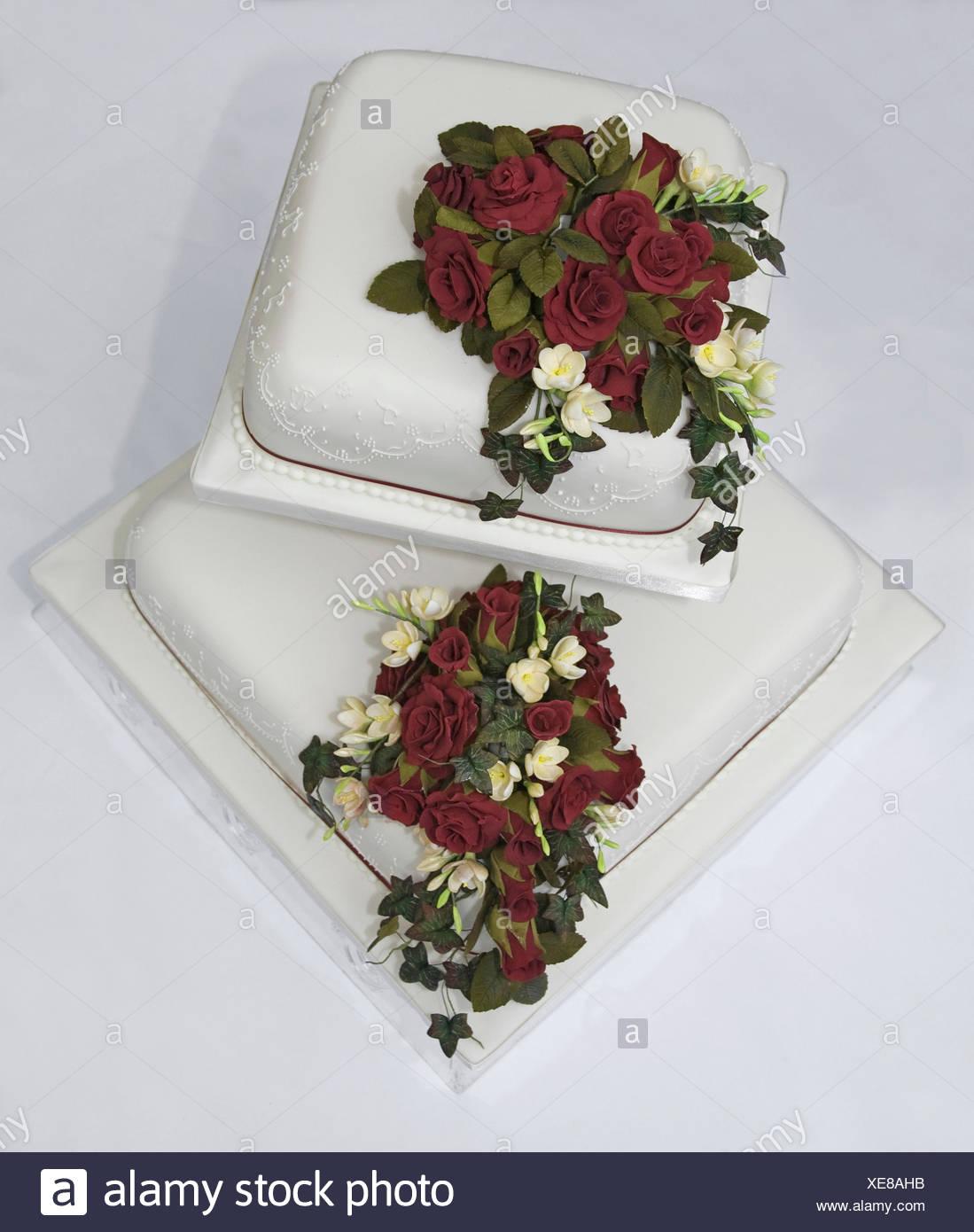 Blume Pflanze Rose Blumen Rosen Kuchen Kuchen Dekoration Torte