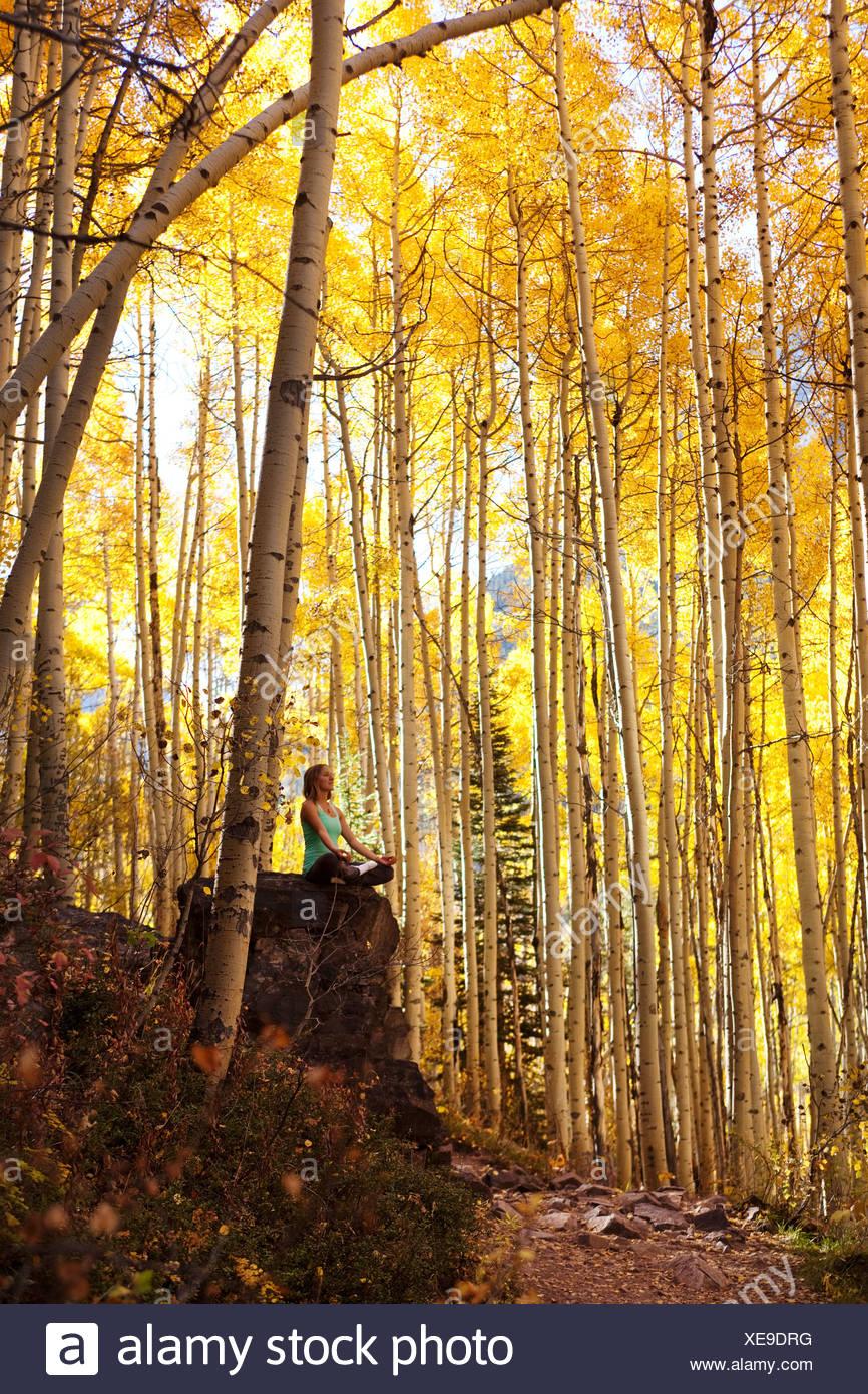 Eine junge Frau meditiert friedlich auf einem Felsen mitten in einem Meer aus Blattgold. Stockbild