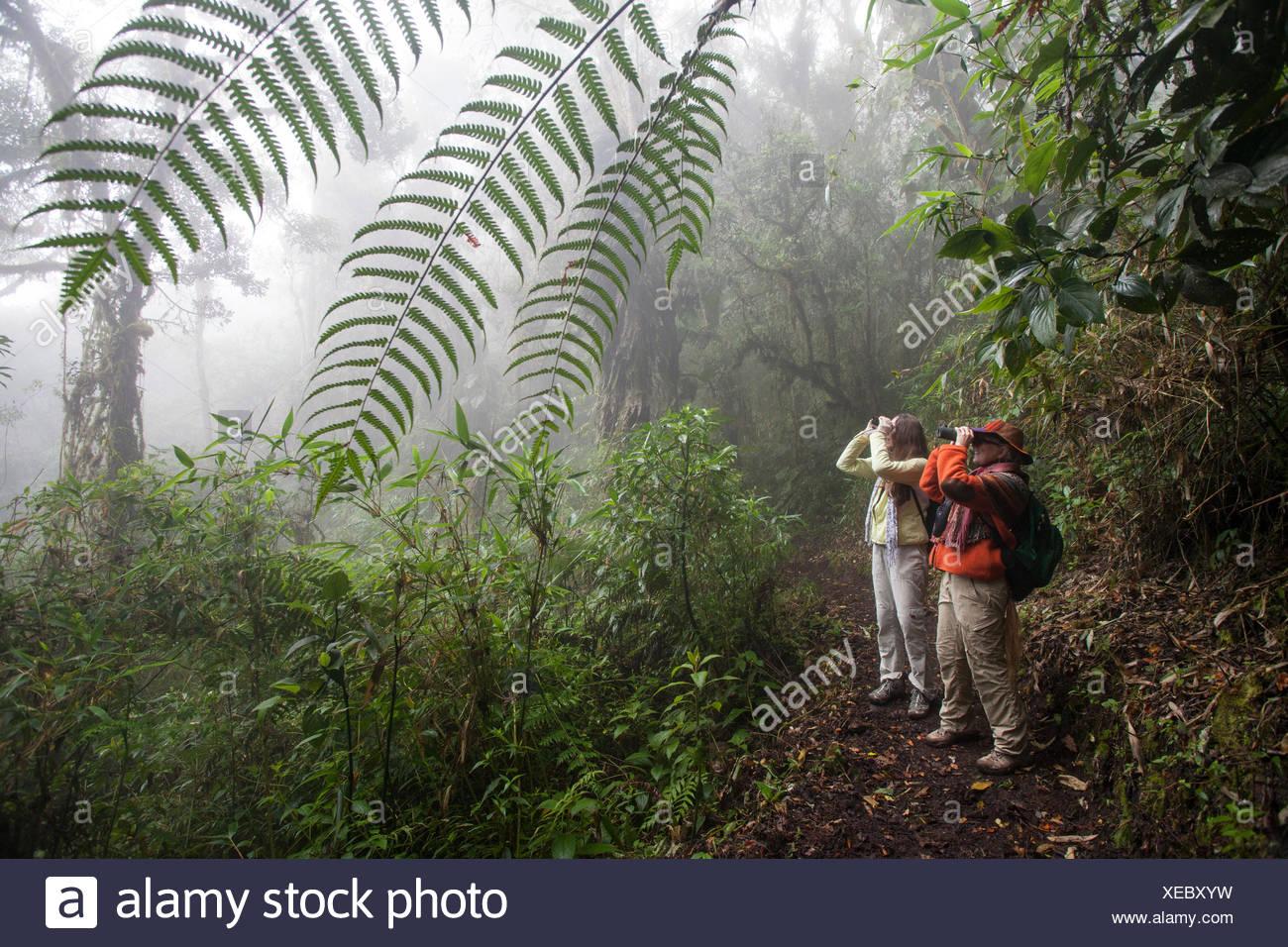 Zwei Frauen mit Fernglas Vögel in den Anden zu beobachten. Stockbild