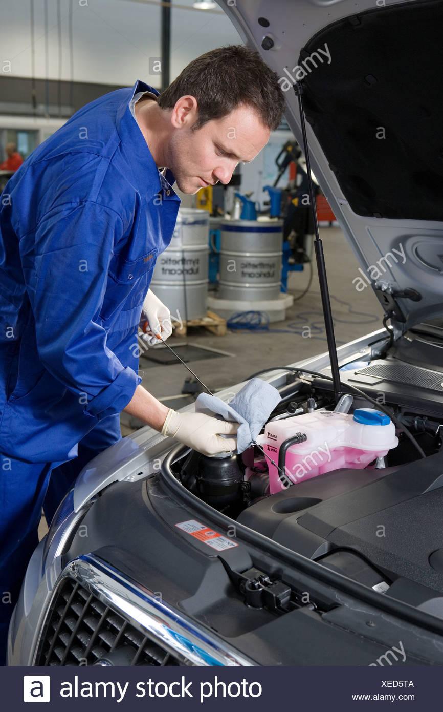 Überprüfung Ölstand Auto Mechaniker Stockfoto, Bild: 284261050 - Alamy