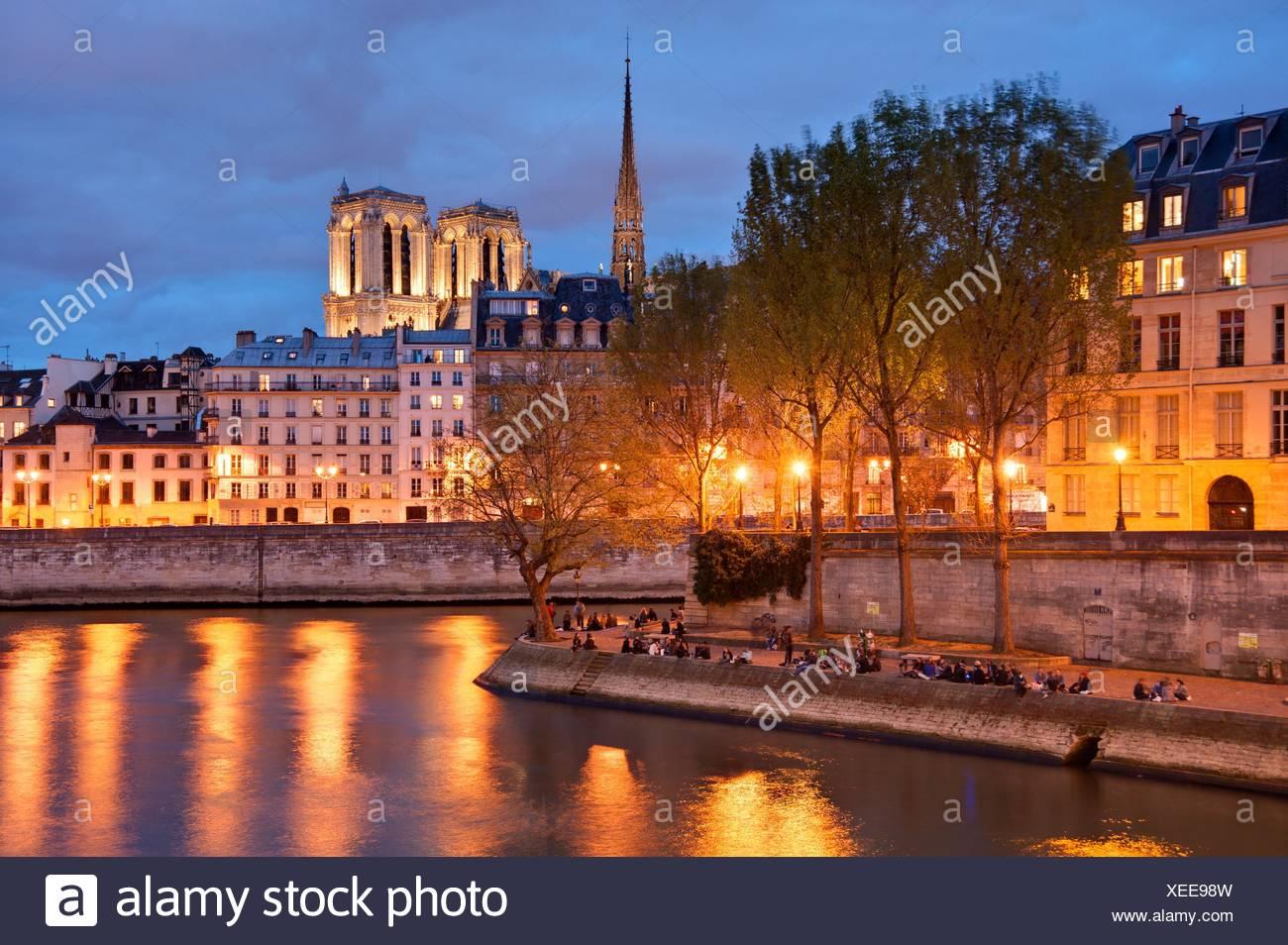 Paris, Seine, Ile de Saint Louis Und Ile De La CitÈ, Kathedrale Notre-Dame Stockbild