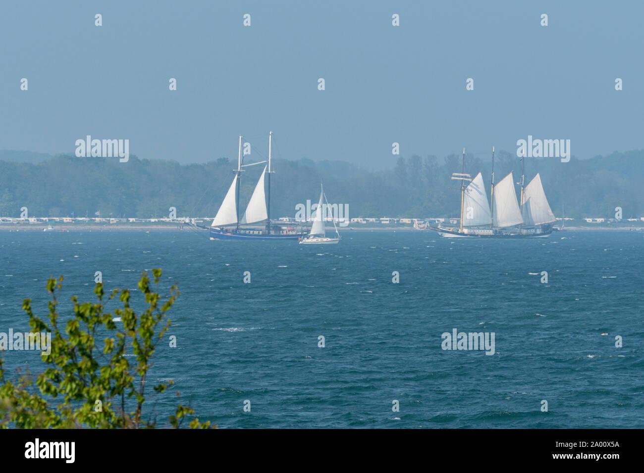 Los barcos de vela, Bahía de Eckernforde, Eckernforde, Schleswig-Holstein, Alemania Foto de stock