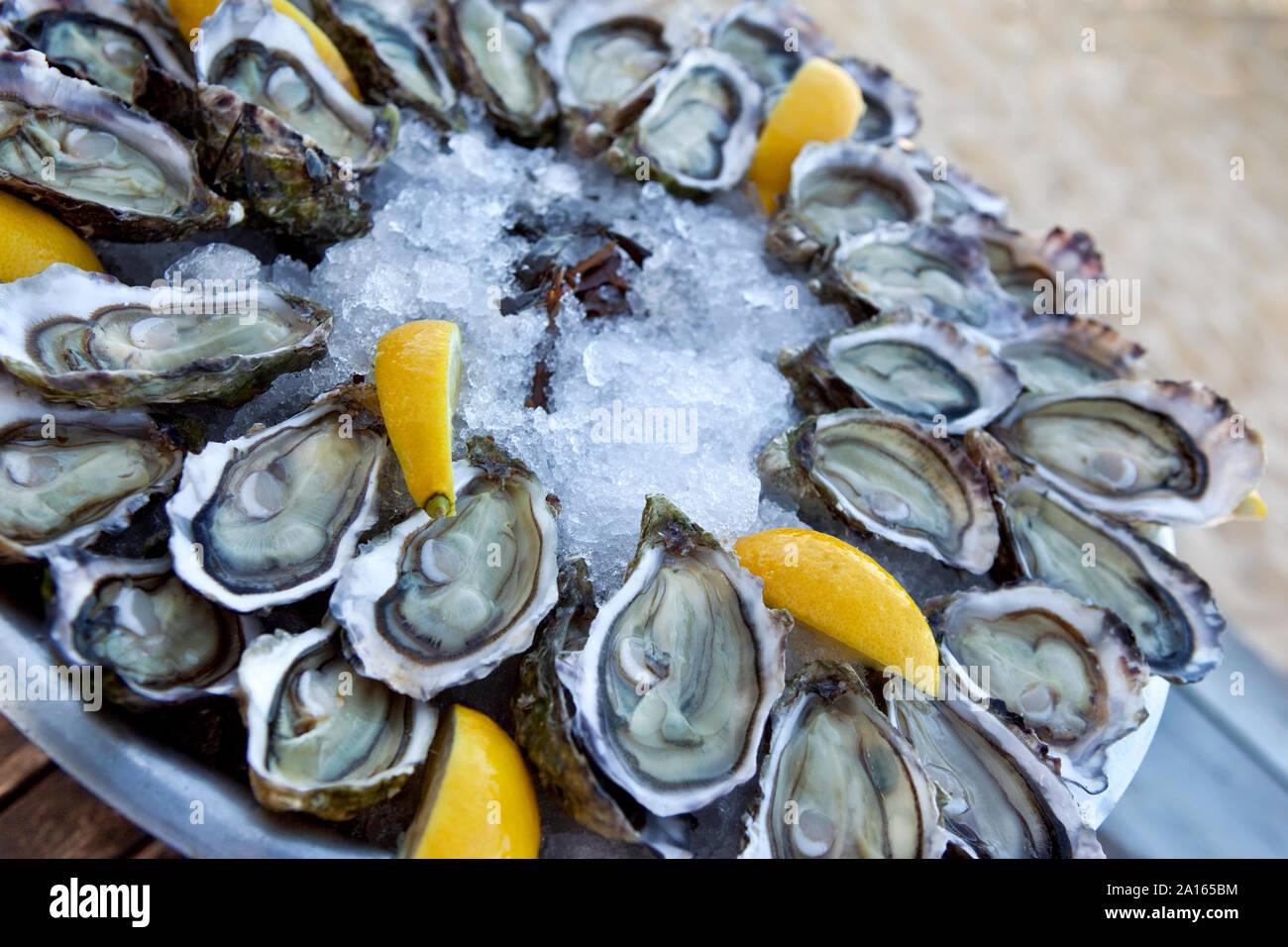 Las ostras de limón y hielo en una placa en un restaurante francés Foto de stock