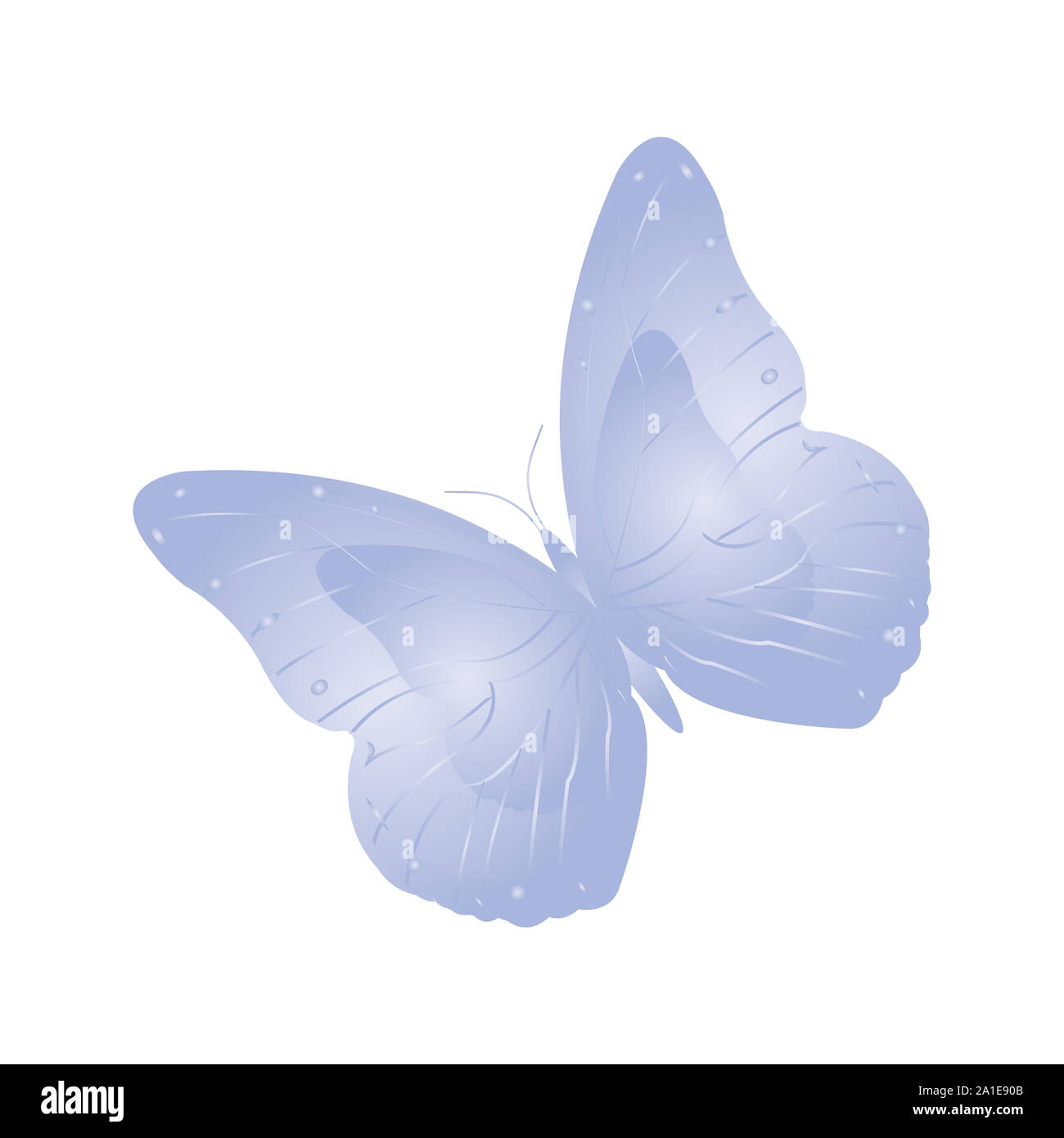 Mariposa, mariposa azul suave Foto de stock