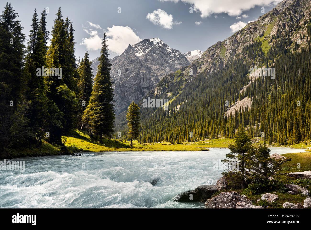 Karakol River en el valle de montaña con grandes pinos y pico nevado en Karakol, parque nacional de Kirguistán Foto de stock