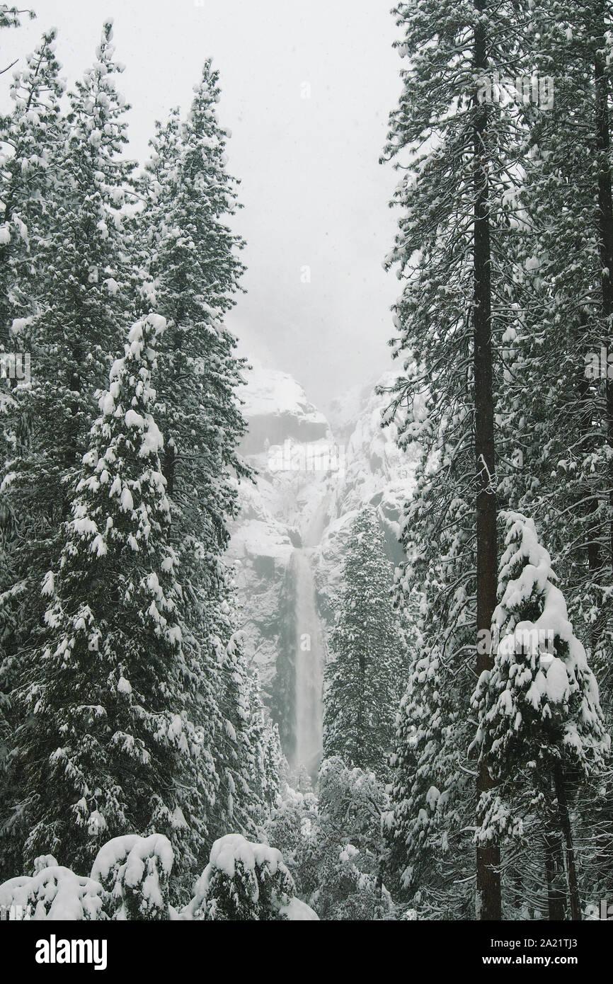 Bridalveil Fall en el Parque Nacional Yosemite en invierno. Foto de stock
