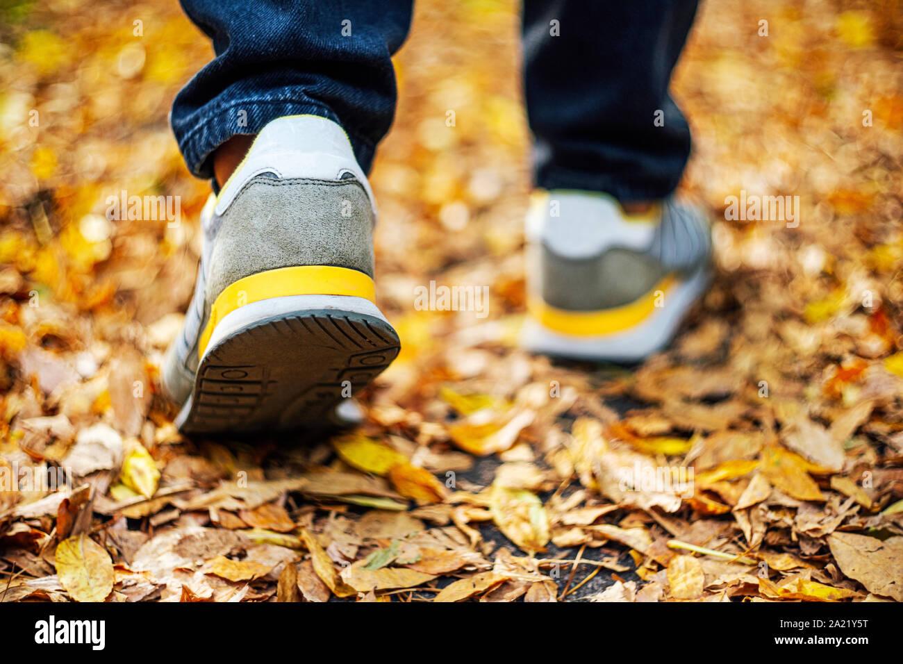 Caminar sobre el pavimento en otoño. Vista posterior de los pies de un hombre que camina por la acera con follaje caído. El clima de otoño en blanco vacío abstracto backgro Foto de stock