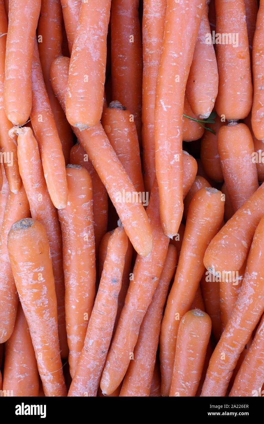 Onu marchŽ Carottes bio sur. Las zanahorias orgánicos en un mercado. Foto de stock