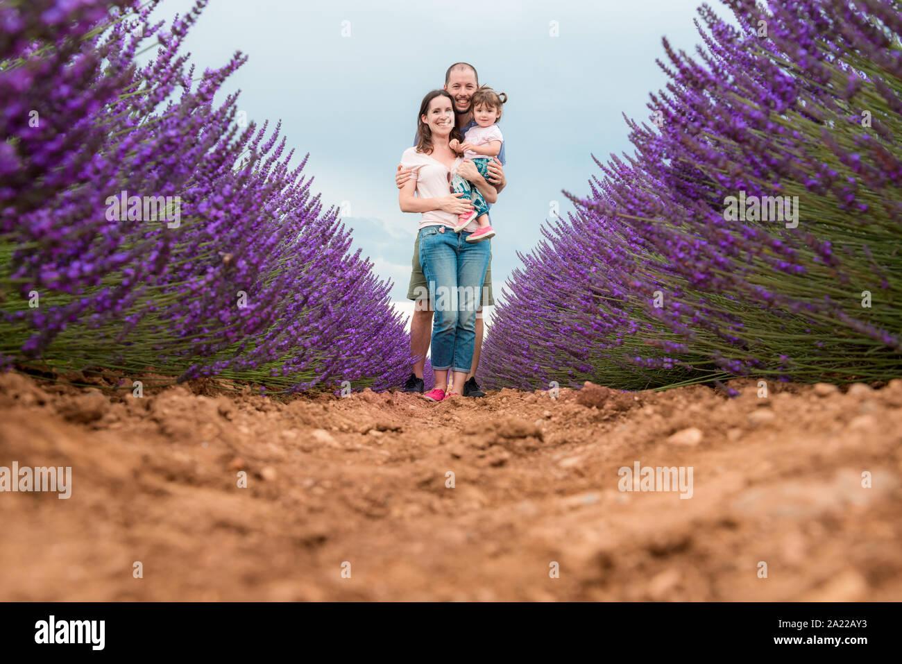 Familia Feliz caminando entre campos de lavanda en el verano Foto de stock