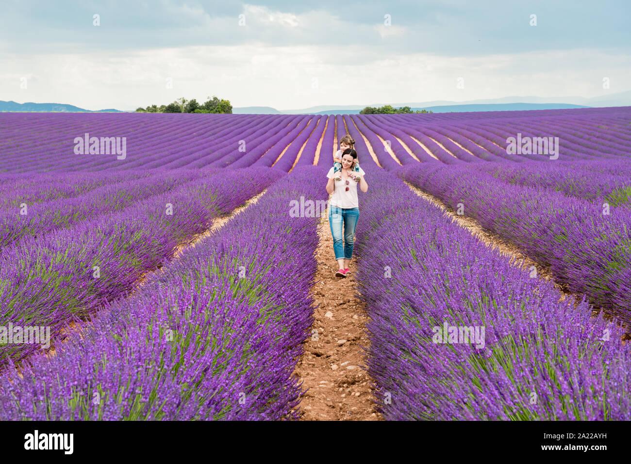 Madre e hija caminando entre campos de lavanda en el verano Foto de stock