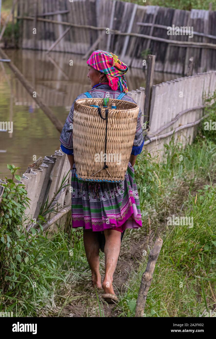 Las Trabajadoras En Terraza De Arrozales Mu Cang Chai