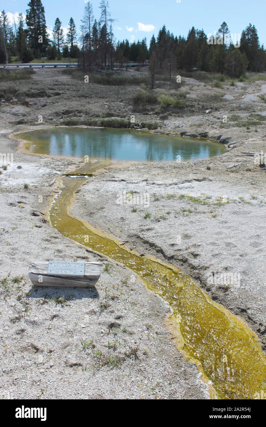 Bacterias extremófilos escurrimiento, junto al lago, el muelle, el Parque Nacional Yellowstone, Wyoming, EE.UU. Foto de stock