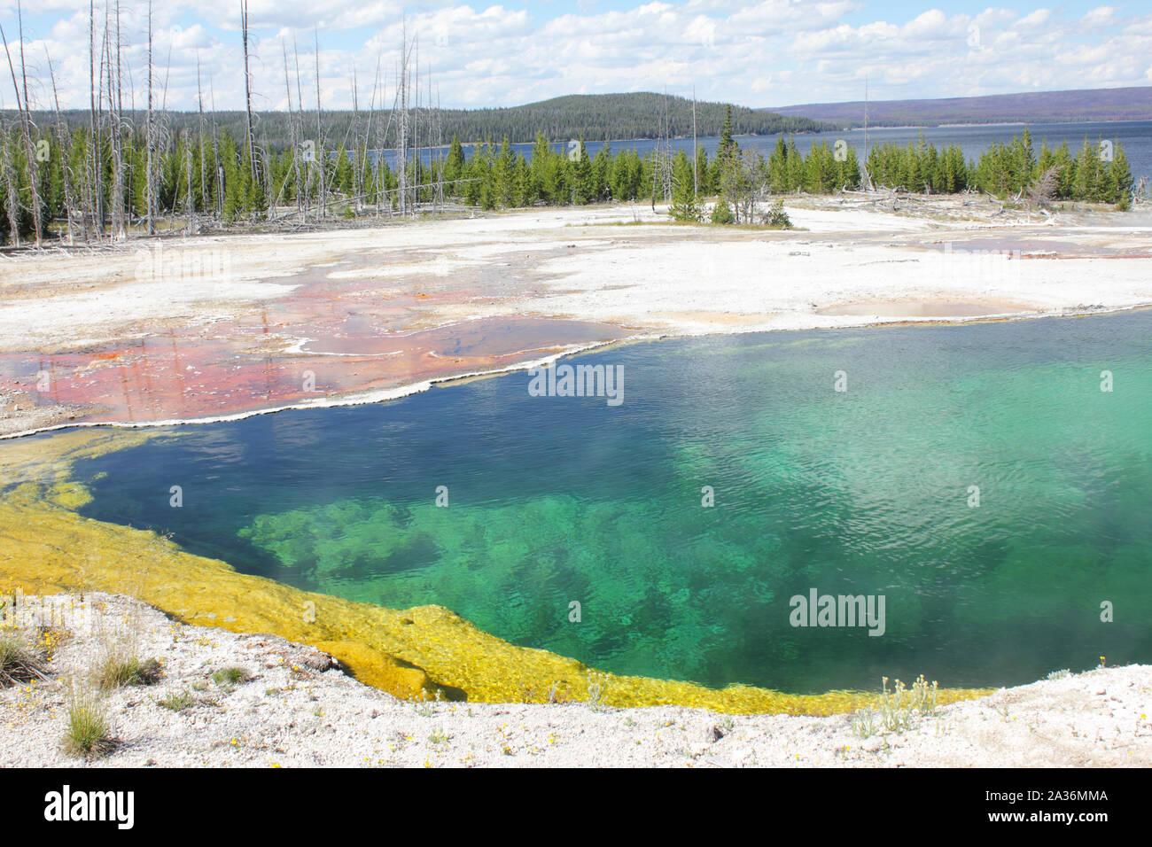 Detalle de hot spring mat bacteriana y agua hirviendo, azul profundo lago Yellowstone, el parque nacional de Yellowstone. Foto de stock