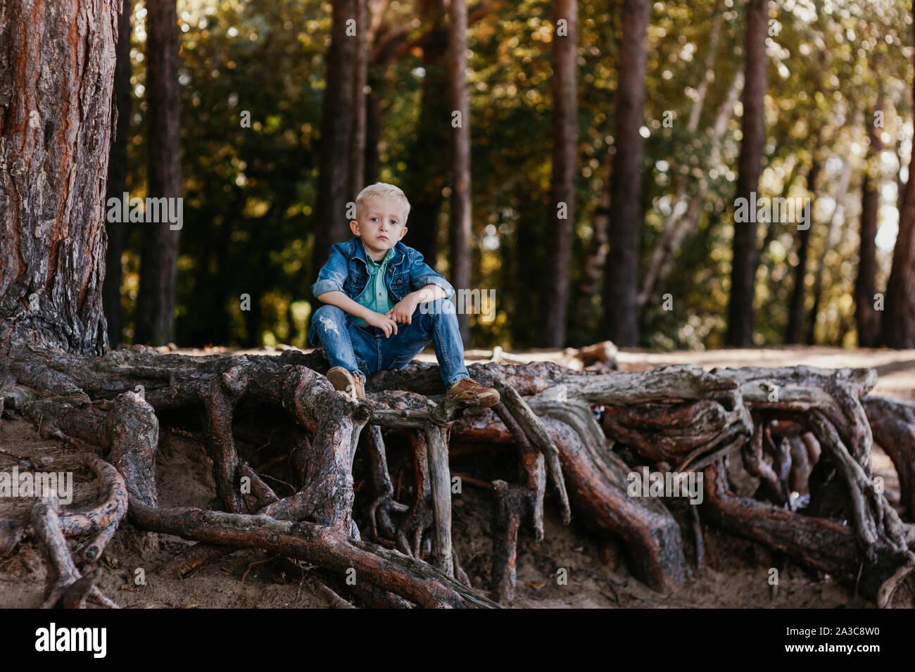 Retrato de un pequeño y lindo niño de 3 años al aire libre en el parque de otoño Foto de stock