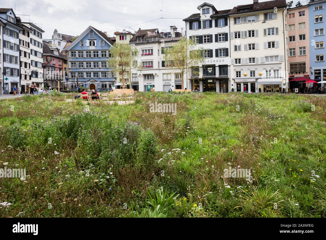Insel in der Stadt meadow instalada por el artista Heinrich Gartentor en la plaza Münsterhof de Zúrich, Suiza Foto de stock