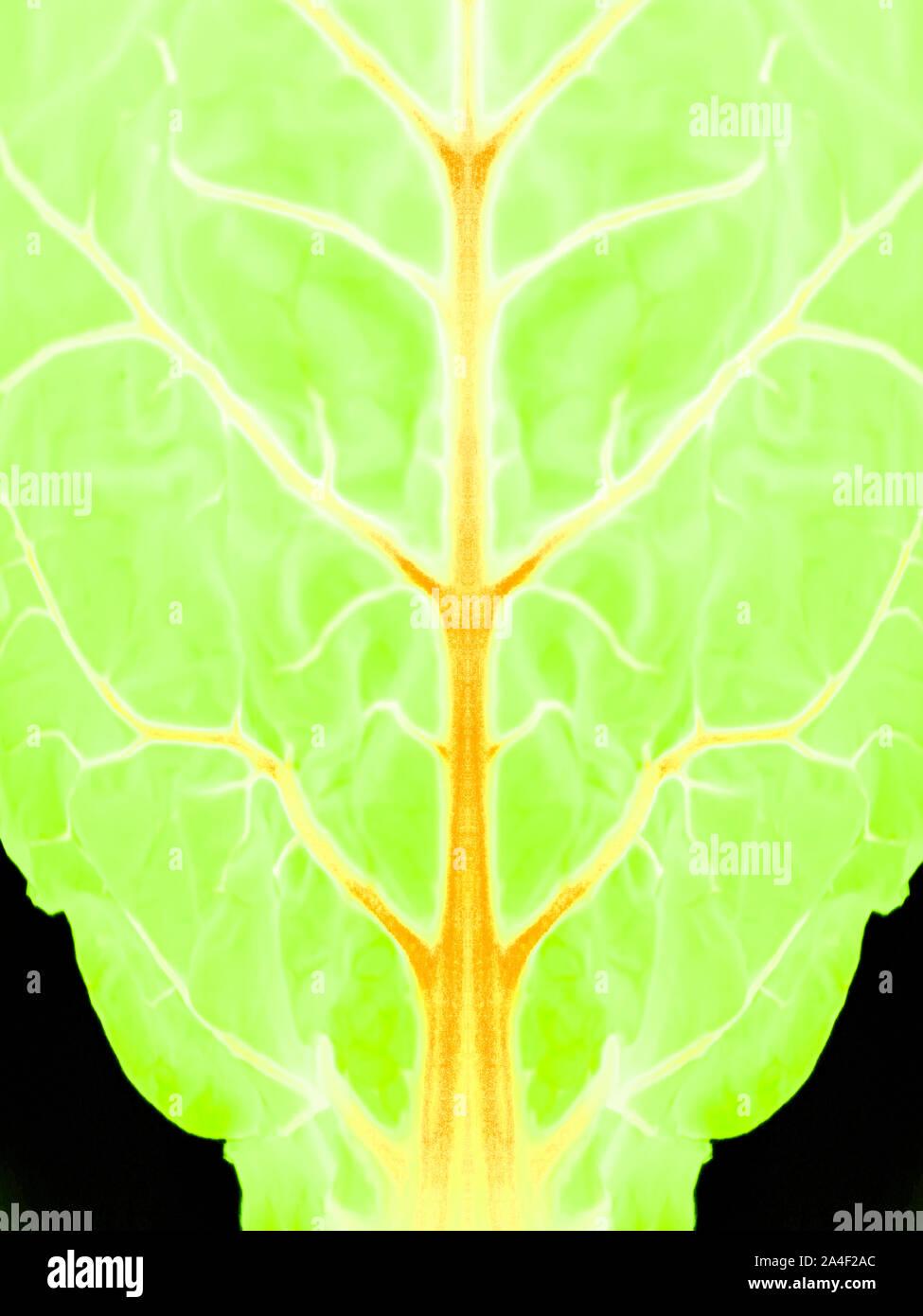 Biología Sintética - Vida Artificial - Resumen ilustración Foto de stock