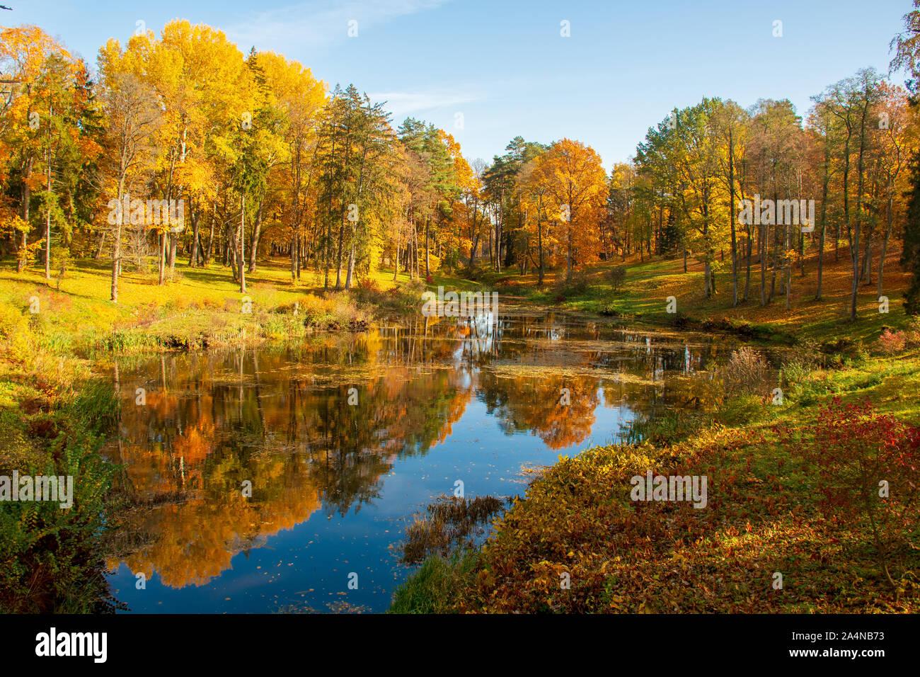 Maravilloso Paisaje otoñal con bellos árboles de color amarillo y naranja, lago o río, vertical Foto de stock