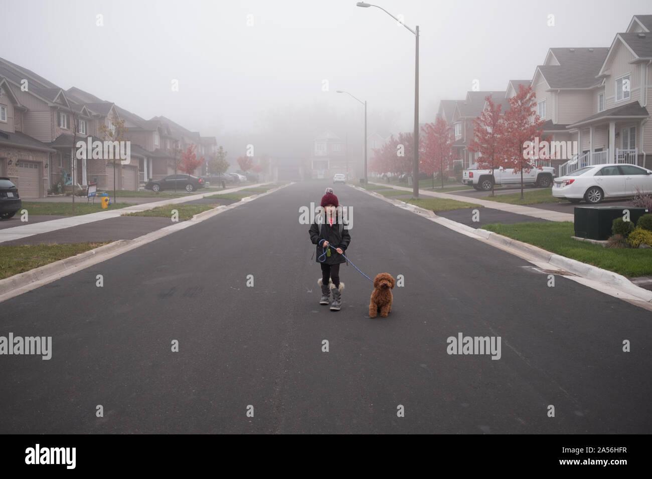Chica paseando a un perro en medio de misty suburban road, retrato de longitud completa Foto de stock
