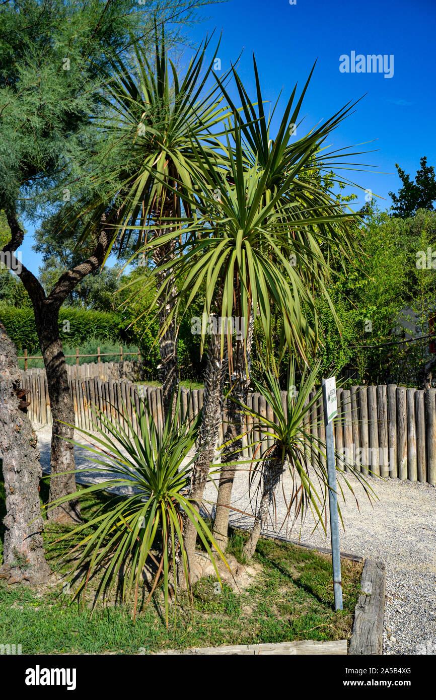 Natur im Zoo Punta Verde en Lignano (Italien) / Tierpark en Lignano / Sehenswürdigkeit en Lignano (Italien) Foto de stock
