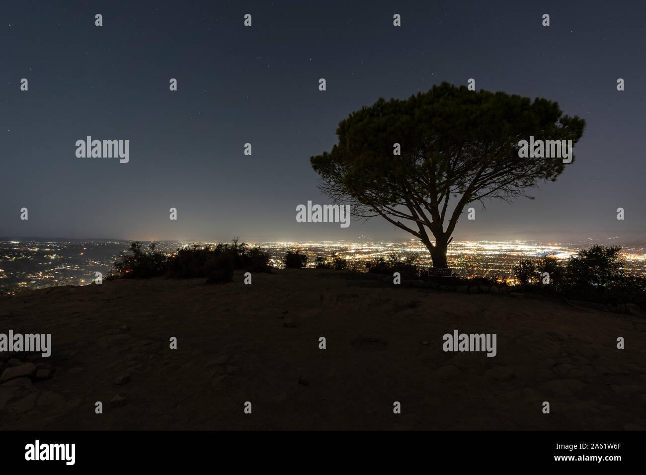 Vista de noche del árbol de la Sabiduría en Burbank Peak cerca de Griffith Park y Hollywood en Los Angeles, California. Foto de stock