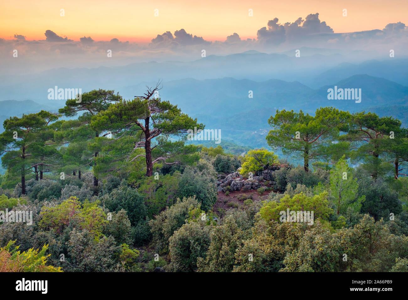 Troödos montañas paisaje al atardecer, Pano platres, distrito de Limassol, Chipre Foto de stock