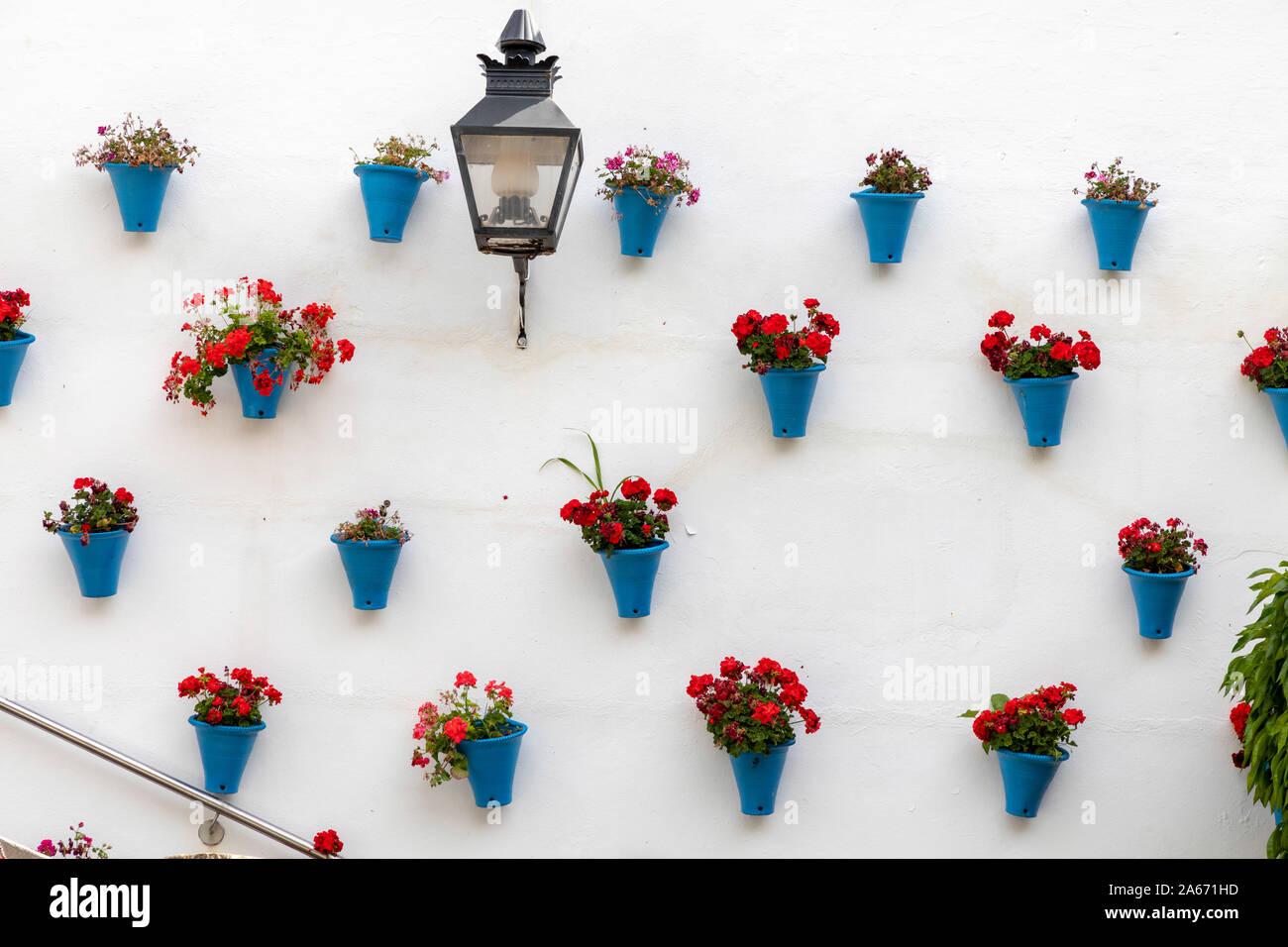 Una pared decorada con flores y jarrones azules, Córdoba, Andalucía, España. Foto de stock