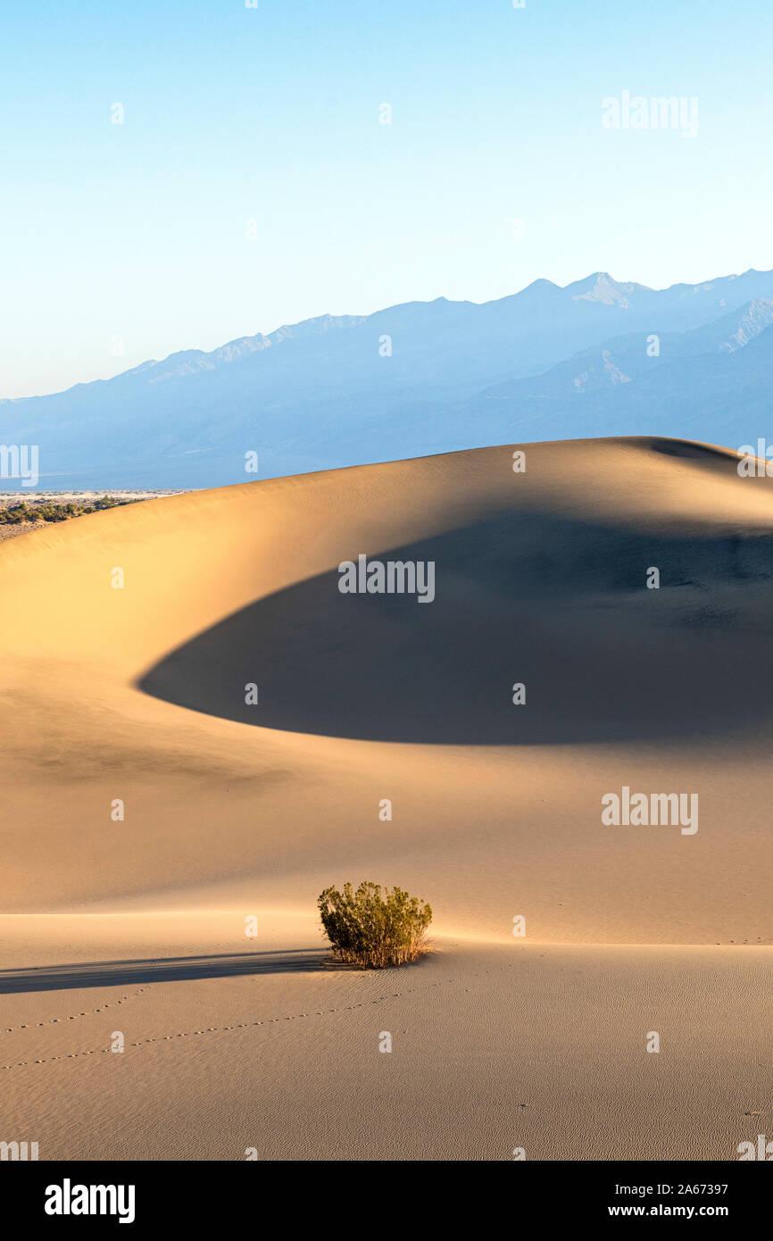 El Mesquite Flat Dunas de Arena, el Parque Nacional Valle de la Muerte, California, EE.UU. Foto de stock