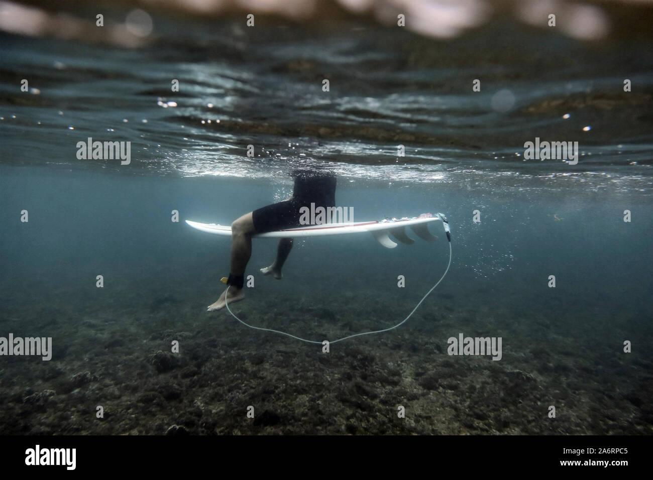 Vista submarina de surfer Foto de stock