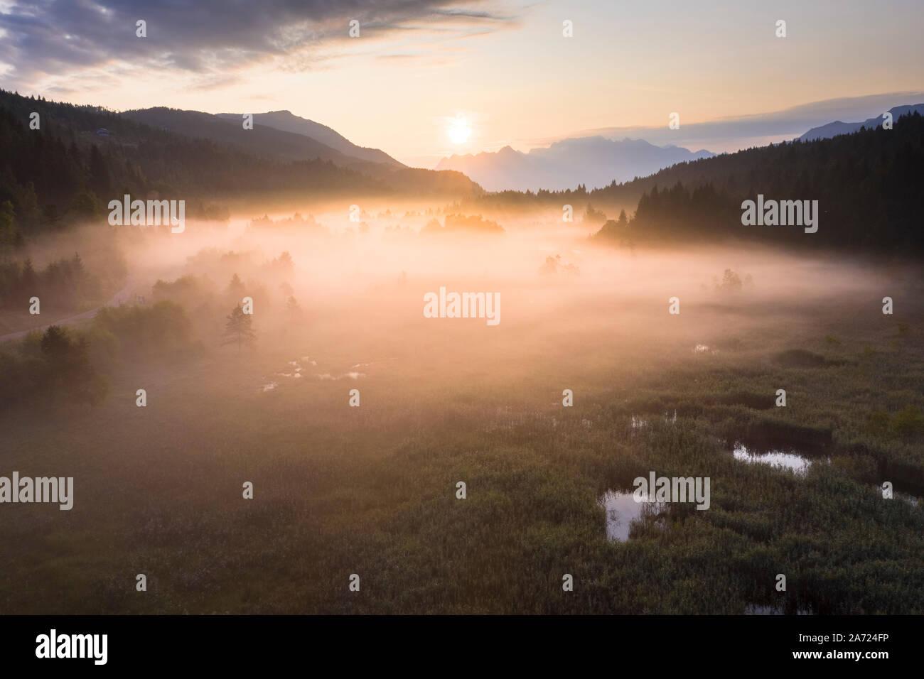 La niebla que cubre las plantas en humedales y pantano de Pian di Gembro Reserva Natural, vista aérea, Aprica, Valtellina, Lombardía, Italia Foto de stock