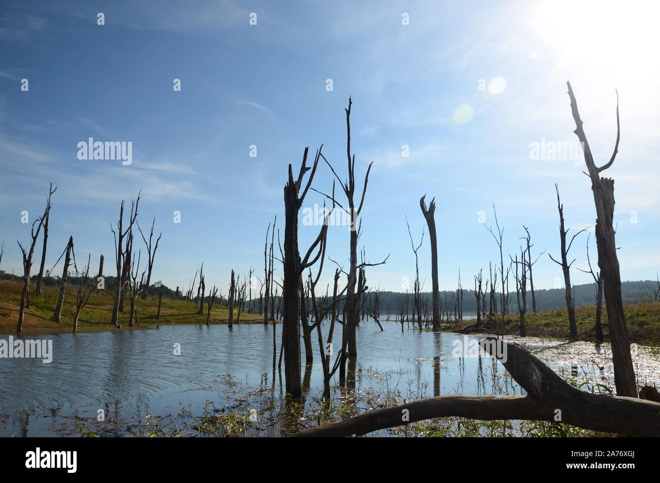 Tierras inundadas, el calentamiento global Foto de stock