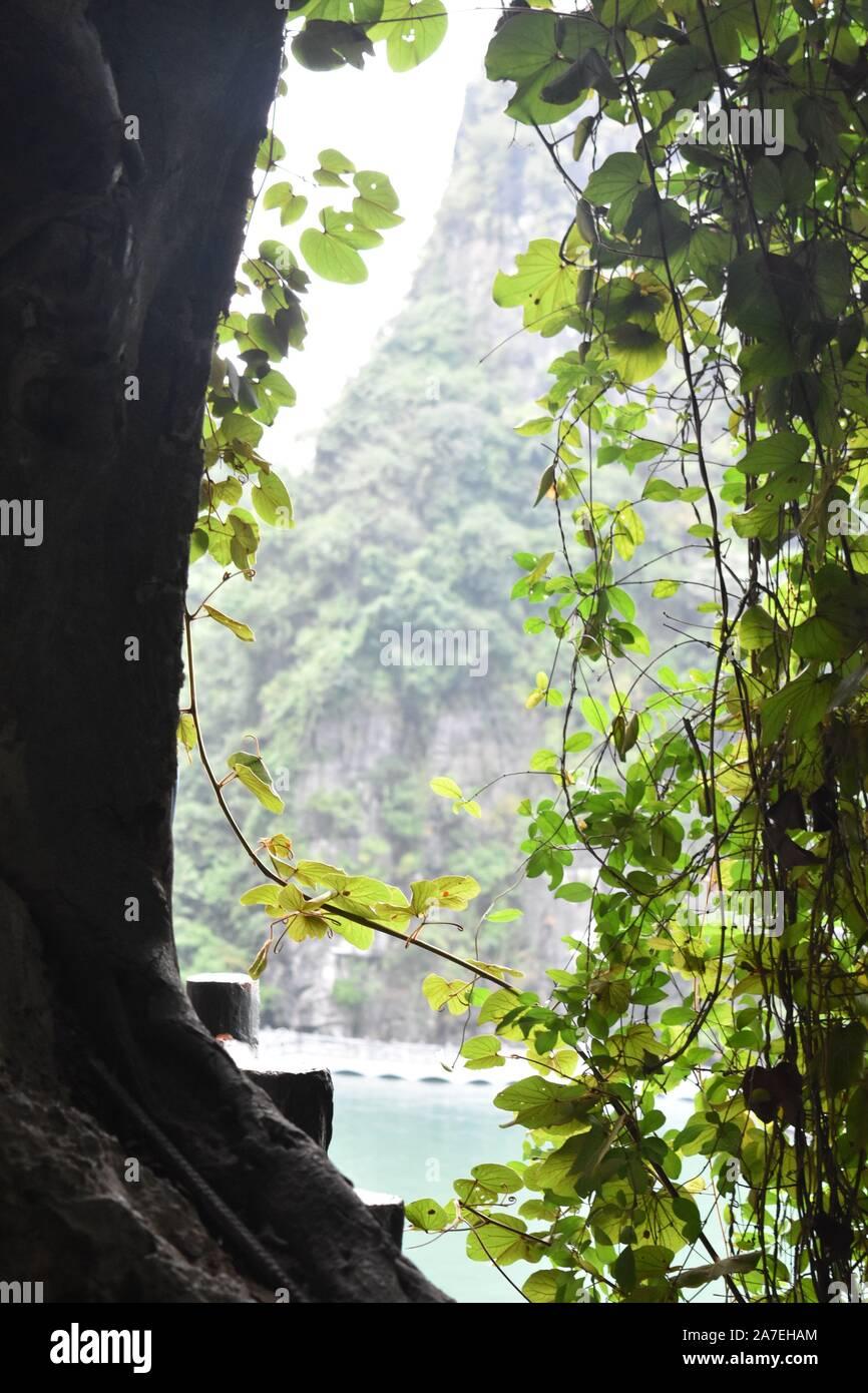 Landcape en la Bahía de Halong, Vietnam Foto de stock