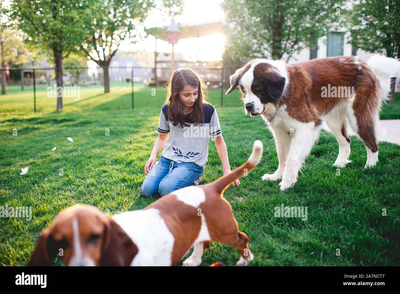 Tween niña sentada en la hierba jugando con 2 perros en el patio de su casa en el hogar Foto de stock
