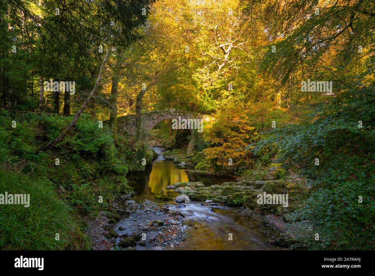 Tollymore Bryansford Park en Irlanda del Norte Foto de stock
