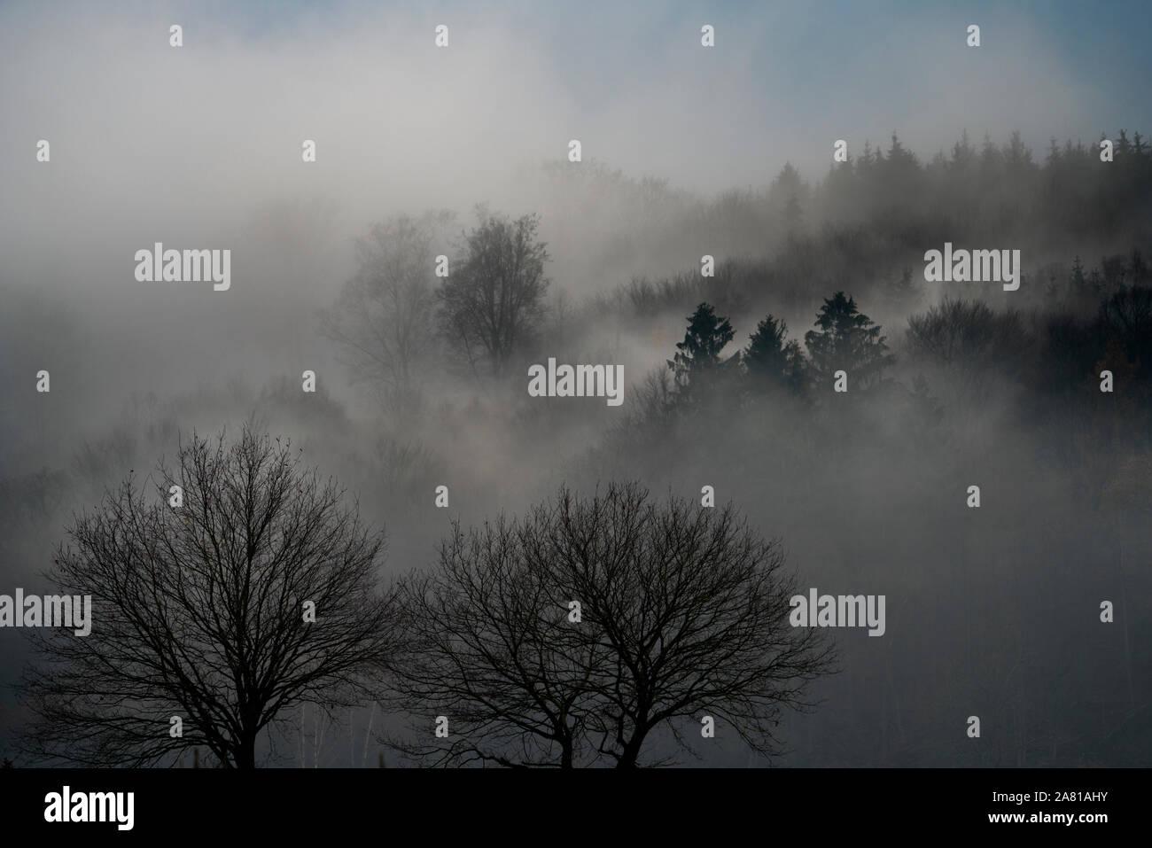 Paisaje neblinoso, cerca Oberweser, Weser Uplands, Weserbergland, Hesse, Alemania; Foto de stock