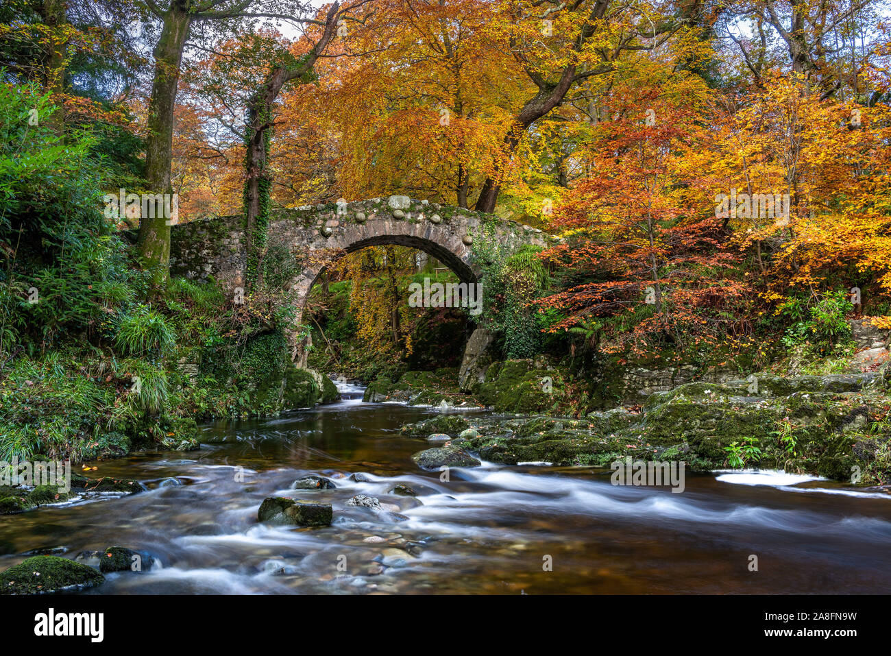 Foley's Bridge otoño Foto de stock