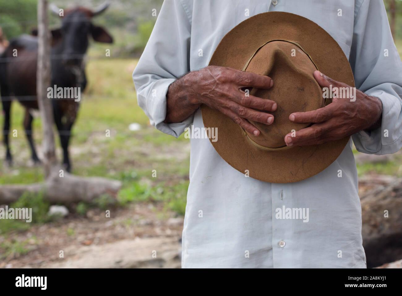 Diamantina, en el estado de Minas Gerais, Brasil - 27 de enero de 2016: Senior agricultor brasileño celebración cowboy hat contra el pecho Foto de stock