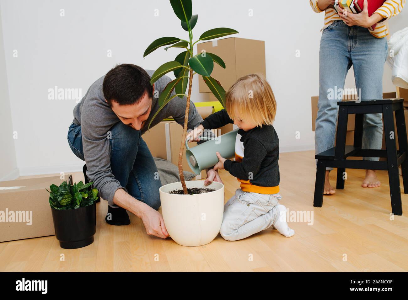 Su familia se mudó a un apartamento de nueva construcción. Regar la planta infantil mientras los padres desembalaje. Foto de stock