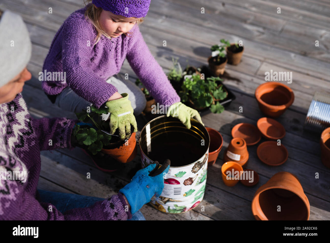 Madre e hija potting plant Foto de stock