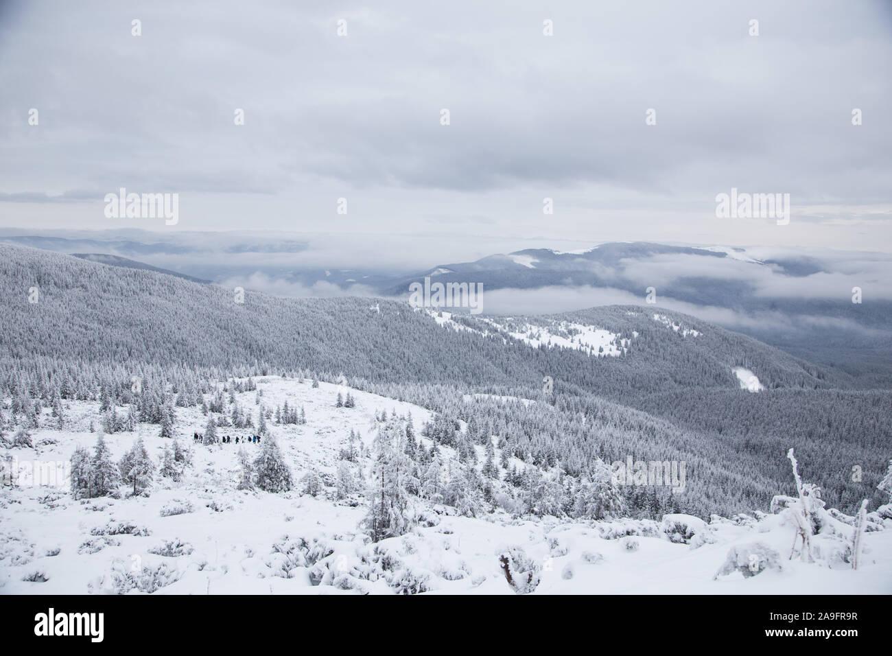 Hermoso paisaje de montaña de invierno. Paisaje invernal con nieve fresca en un bosque de montaña Foto de stock