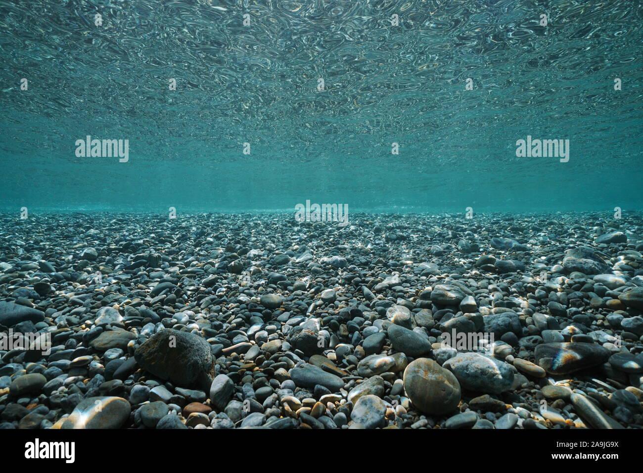 Los guijarros de rocas debajo de la superficie del mar submarino en aguas poco profundas, escenario natural, Mediterráneo, Francia Foto de stock