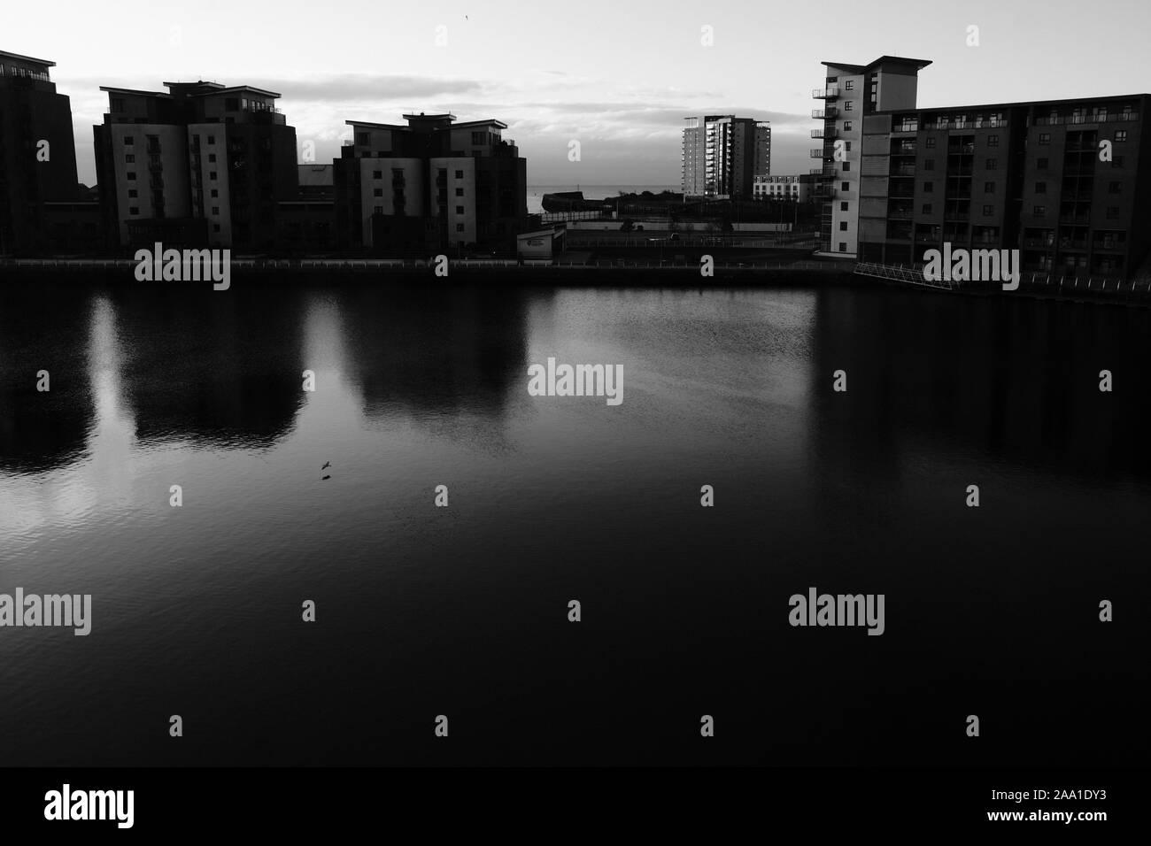 Un solitario en el ala de gaviota volar sobre el agua en el sol por la mañana temprano en el invierno de un frío día en el barrio marítimo de Swansea waterfront cuenca Foto de stock